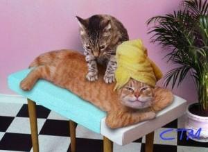 Massaggio_Shiatsu 4